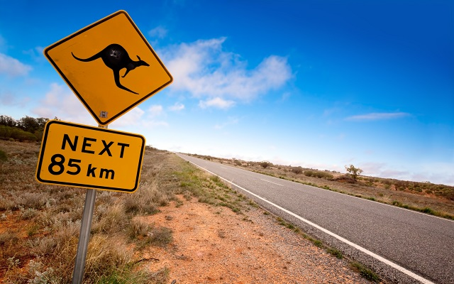 Kangaroo Fencing Outback Road Signs