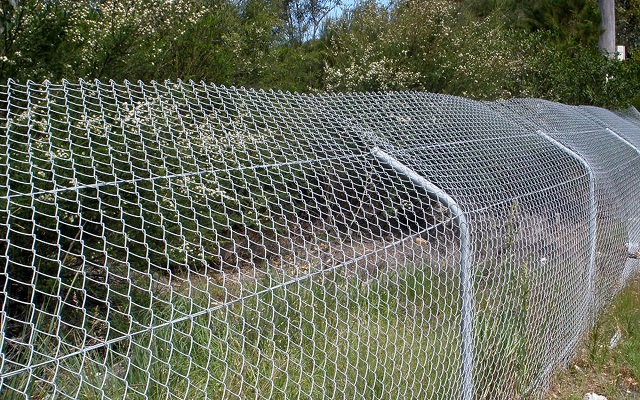 Fauna Fencing project in Queensland